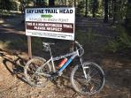 You can take a peaceful ride on any of the many trail heads.