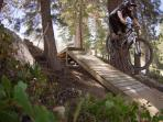 There is a world class biking park and groomed trails.