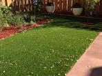 Carefree, no maintenance 'grass.'