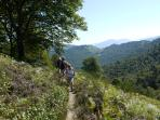A walk in the foot hill of the Pyrénées, approximately 50mins drive from the gite