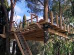 TREEHOUSE (TREEPLATFORM) IN COMPLETION
