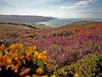 Exmoor National Park, an hours drive, but worth it. Joining the rugged & wild Atlantic coast