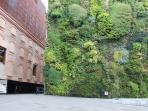 CaixaForum vertical garden, just 3 minutes walking from apartment