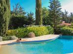 Pool Surroundings 3