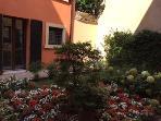 Little garden outside