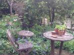 Small, but perfectly formed garden!