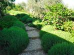 Naturstein-Treppe mit  Lavendelkurgeln -  natural stone stairs with lavender balls