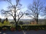 Panorama from the garden