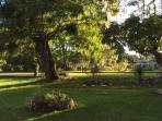 Le jardin, vue du gîte