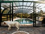 La piscina con la copertura in bassa stagione