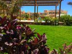 Tropical Resort - Gardens