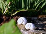 Kleine Welten im Garten von Atelier Rapp...