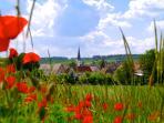 Der Ort Obervolkach, ruhig gelegen inmitten der schönen Landschaft von Franken.