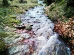 Medvednica – Nature park