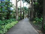 Caminho pra uma caminhada segura ao ar livre.
