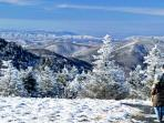 Winter, top of Roan Mtn