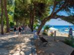 Promenade &beach