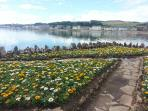 Millport Flower beds