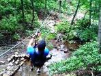 zipline..Hiking activities