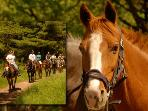 Horseback Riding farm 10 min away