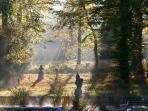 Domaine de Chantemerles : le Parc