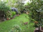 Beautiful 100ft garden