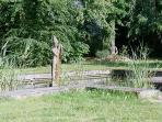 Domaine de Chantemerles : Parc et bassin