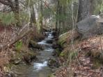 babbling brook next door