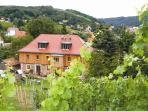Stay in a an historic winery in Meißen with its own wineyard.