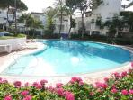 Main Large Swimming Pool