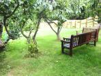 Your private orchard Garden