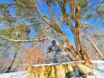 Bouddha en orée de forêt