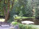 Beautiful pond  in our cul-de-sac. A path meanders around it. Sit, rest, enjoy surrounding beauty!