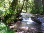 Marten Creek, west border