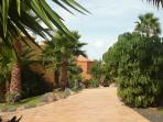 Vista de llos apartamentos entre la vegetación de los jardines