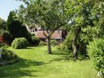 Sunny South facing garden. Garden is huge and perfect for exploring.