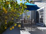 Outdoor  dining area with umbrella and, of course, the lemon tree