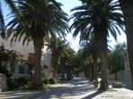 Center- Street of Palms, with grocery shops, restaurants, and other amenities. 2 min from the villa.