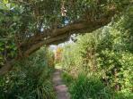Secret pathway to garden gate