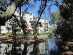 Forest Beach Villa Grounds