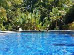 The pool at Cozy Manuel Antonio Cottage