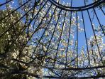 Frühling im Ferienhaus-Garten