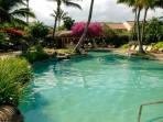 'Natural' pool