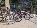 Biciclette per tutta la famiglia (20.- euro a settimana per bici)