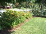 Azaleas, day lilies along picket fence; yard maintenance provided weekly