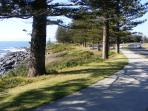 Walking path near Stony Beach, Tuross Head.