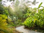 Summertime has two acres of tropical gardens