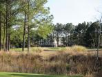 One of four golf courses inside Barefoot Resort - Fazio Love Norman and Dye courses