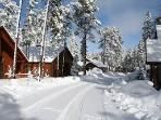 Pinetop Crossings after a fresh snow fall