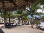 Playa y tumbonas